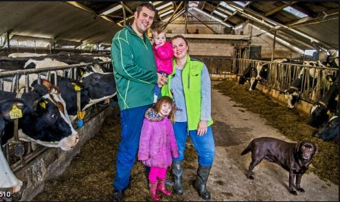 Melkveebedrijf Vermeulen-Rehorst